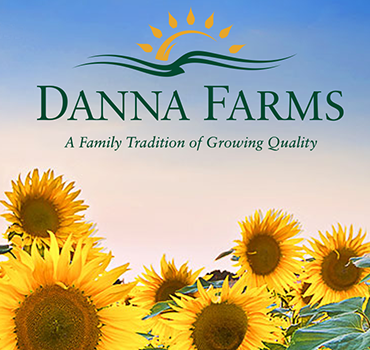 DANA Farms landing image of sunflowers