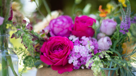 Flowers on Film: Videography for the Field to Vase Dinner
