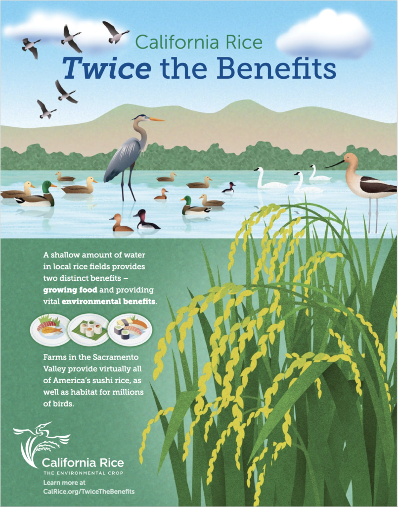 California Rice Twice the Benefits advertisement