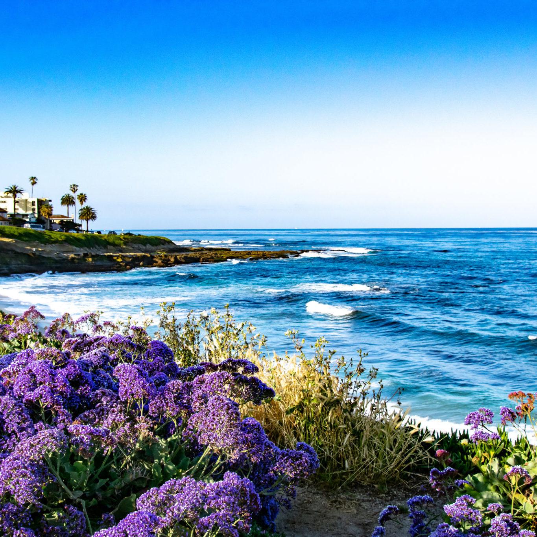 La Jolla, CA of the Pacific Ocean