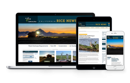 web-calricenews-3devices
